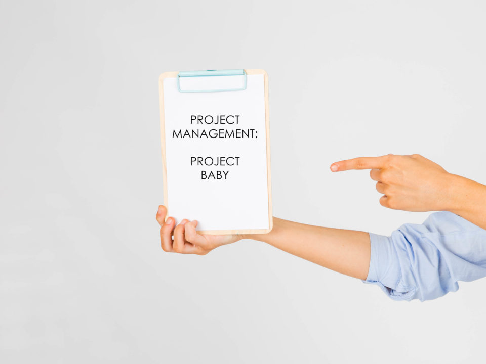Project management - project baby