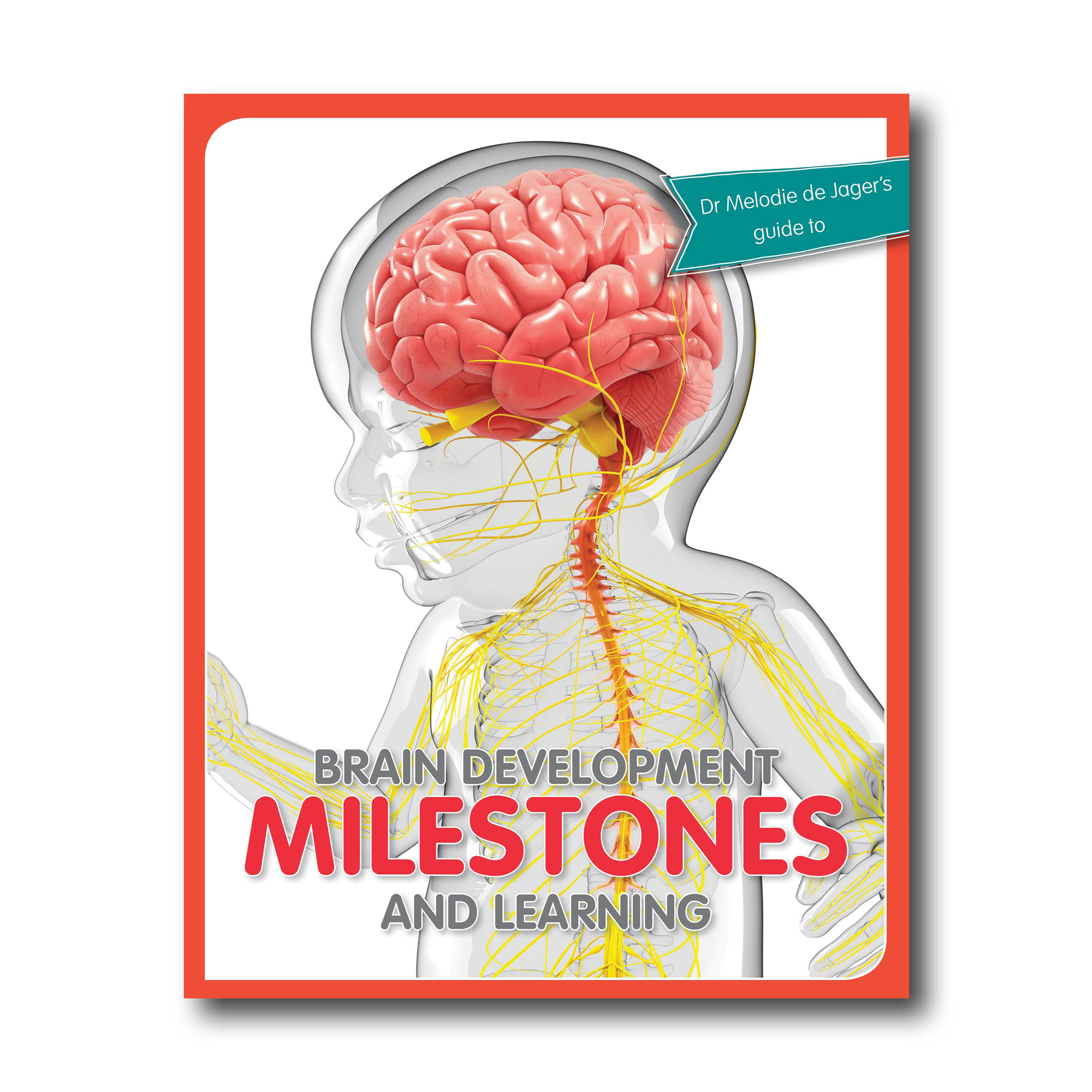 de Jager M 2019 Brain Development Milestones and learning_Johannesburg Mind Moves Publishing_